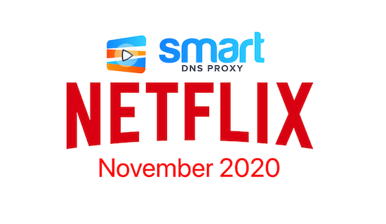 Netflix in November 2020 – all premieres and shows leaving the platform